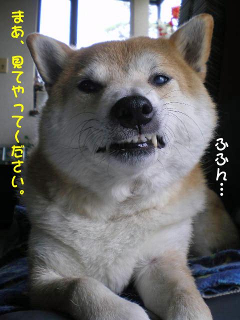 28日ブログ1.jpg
