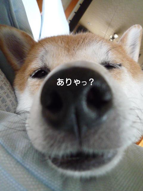 29日ブログ1.jpg