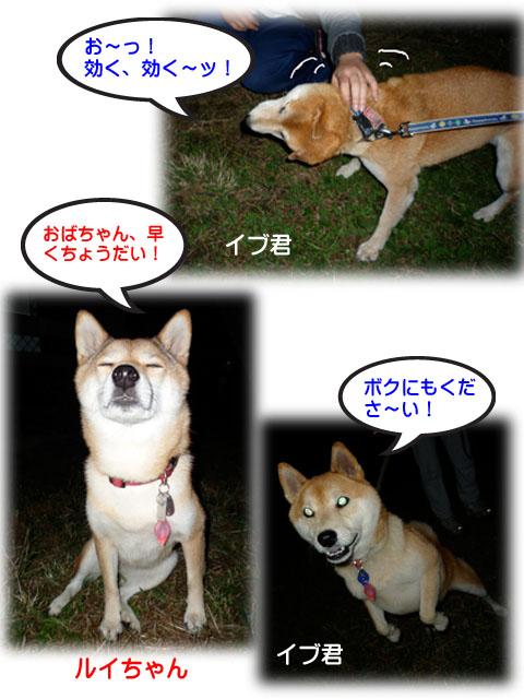 29日ブログ9.jpg