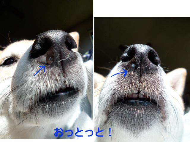 3日ブログ3.jpg
