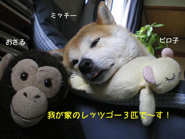 20日ブログ1.jpg