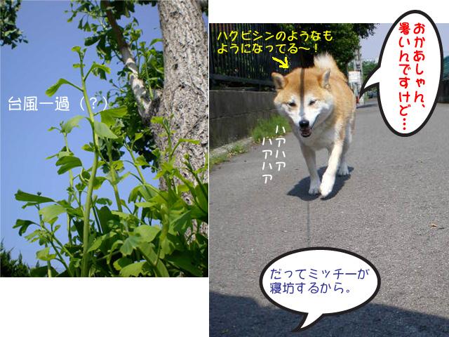 21日ブログ4.jpg