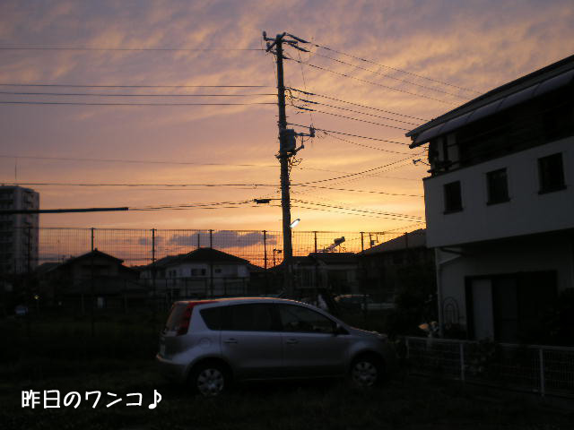 21日ブログ5.jpg