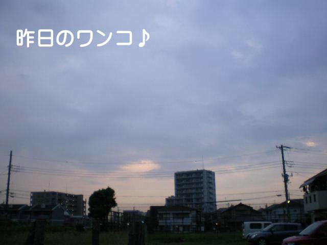 26日ブログ9.jpg