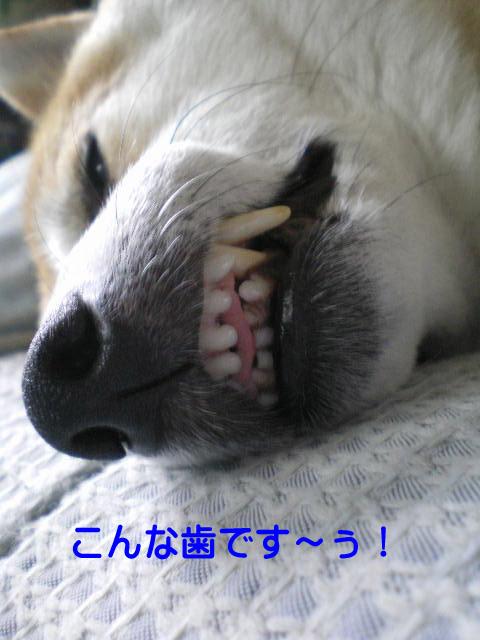 27日ブログ2.jpg